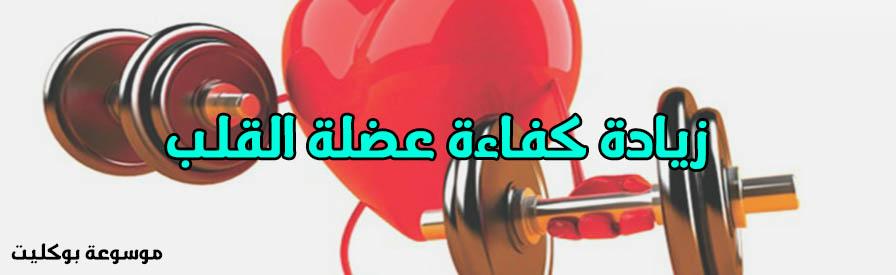 تقوية وزيادة كفاءة عضلة القلب والوقاية من أمراضه