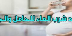 فوائد شرب الماء للحامل والجنين مع 5 نصائح هامة