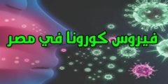فيروس الكورونا في مصر وكيف تحمي نفسك وأولادك منه