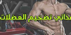أفضل نظام غذائي تضخيم العضلات صافي +  جدول تمارين