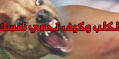 عضة الكلب أعراضها وعلاجها وطرق الوقاية منها