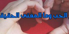 أنواع الحب وما المعنى الحقيقي له وأقوى كلام عن الحب