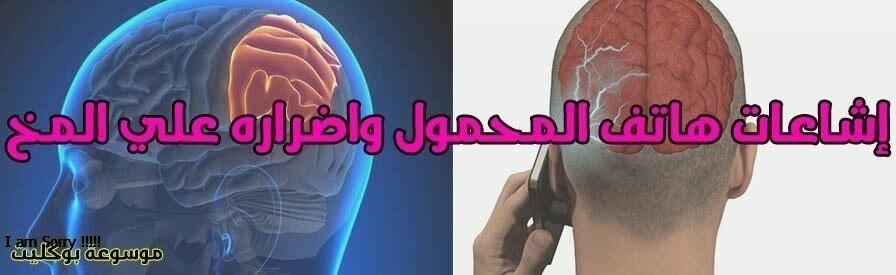 إشاعات هاتف المحمول يسبب جلطة المخ وتلف الأعصاب