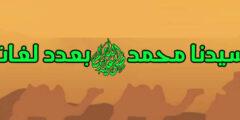 تعريف سيدنا محمد ﷺ بعدد لغات العالم