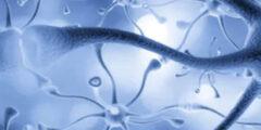 أفضل 10 وسائل لعلاج ضعف الأعصاب وتقويتها بالتفصيل