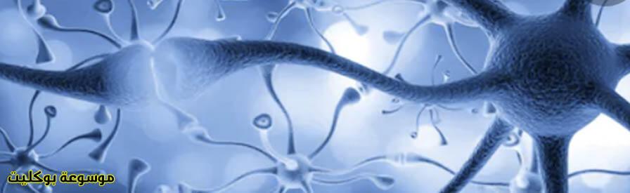 أفضل وسائل لعلاج ضعف الأعصاب بالتفصيل منزلياً وطبياً