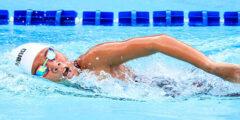 تاريخ السباحة، الصدر، الفراشة، الظهر، الزحف على البطن