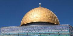 كل ما تود معرفتهُ عن فلسطين ودعم الدول لها