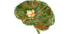 برمجة العقل لتستطيع التحكم في جسدك وتجنب التوهم