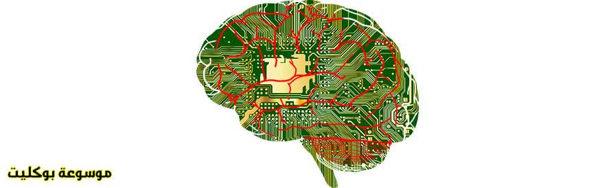 برمجة العقل لتستطيع التحكم في جسدك بشكل كامل